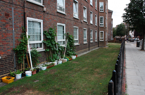 Edible walk Hackney: Pritchard's Row