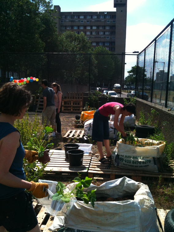 Community garden on a disused ball pitch, east London