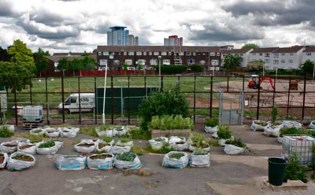 Research: Making space for food. Community food gardens in London