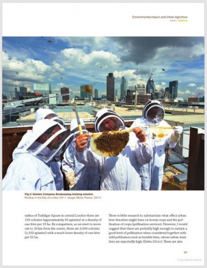 Publications: Second Nature.Bricks and Nectar: Urban beekeeping in London