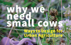 Title: Why we need small cows