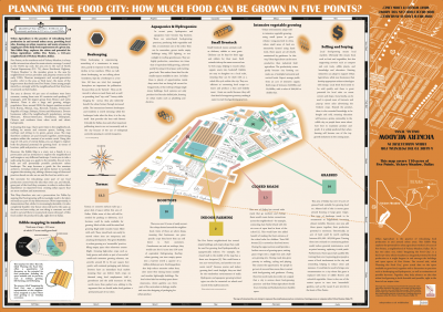 Reverse of Dallas Edible Map