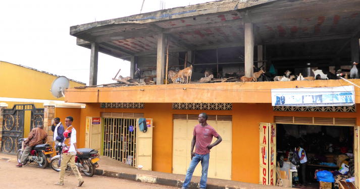 First floor goats, kisenyi