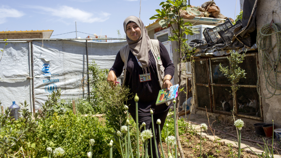 Urban Agriculture, Domiz refugee camp, Iraq