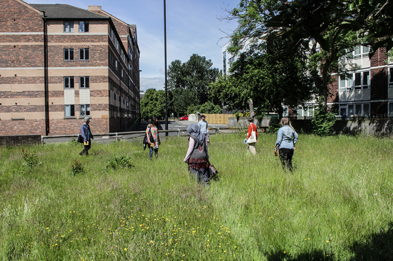 Edible Walk in an urban hayfield Shieldfield