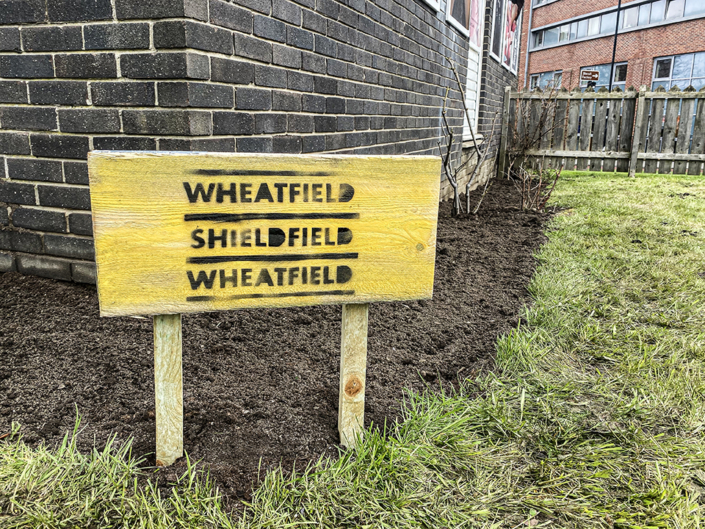 Wheatfield Shieldfield